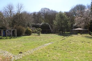 The large garden at the rear of Willowhurst