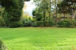 Large garden at front of Woodside